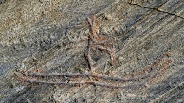 A photo of the original carving, which depicts one of the earliest evidence of skiing in the world.