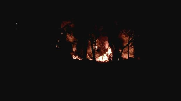 Flames rise among trees in the Keirunga Gardens in Havelock North.