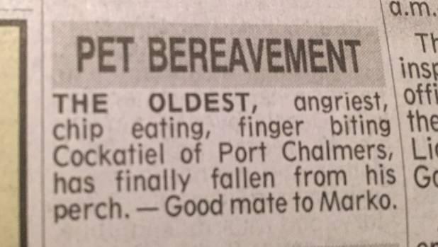 A death notice for Mark Munro's beloved cockatiel, Puffin.