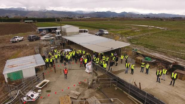 Horticulture New Zealand Conference delegates watching the DroneMate Agriculture demonstration at Appleby Fresh.