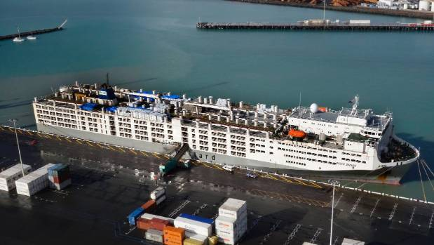 The livestock carrier Ocean Drover berthed in the Port of Timaru on Friday morning.