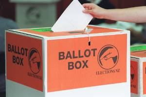 Would more youths vote if there were an option to vote online?