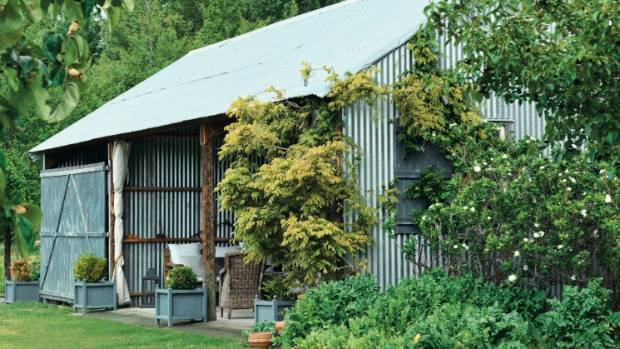 The Party Barn Used To Be A Panel Beaters Shed Blue Wisteria Is Draped