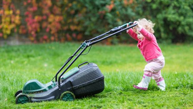 Just like humans, lawns need constant attention to be at their best.