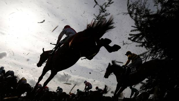 Image result for JUMPS RACING BLACK AND WHITE