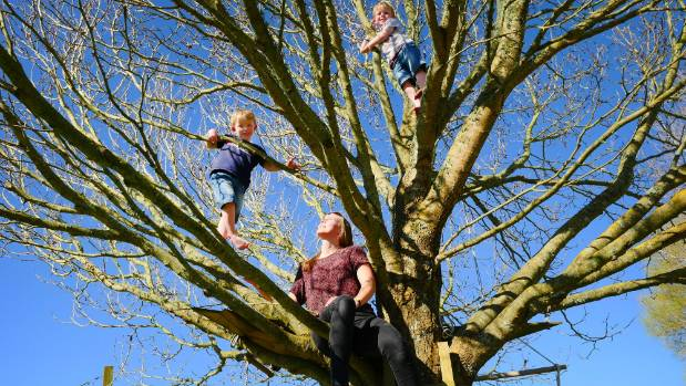 Au pair Katja Heise watches on as 4-year-old twins Angus and Quinn O'Sullivan climb up their favourite tree.
