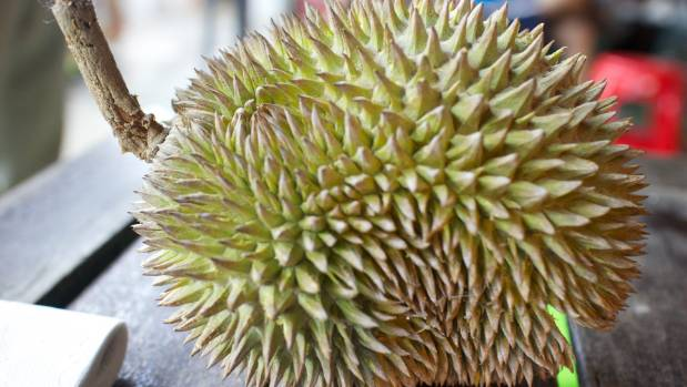 Durian is a fruit known for its ghastly aroma.