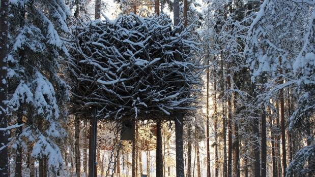 The Bird's Nest is covered in jagged branches and looks like the home of a giant raptor.