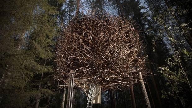 The Bird's Nest Treehotel in Lulea, Sweden.