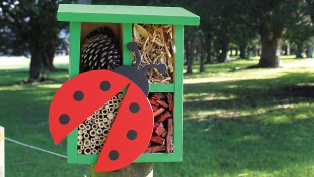 How To Build A Bug Hotel For Your Garden Stuff Co Nz