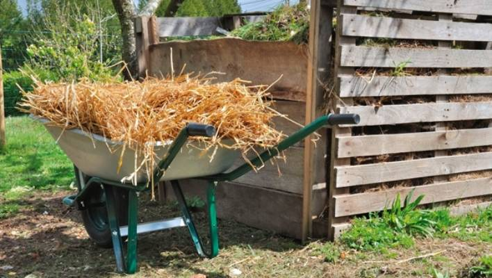 Adding a good 5-10cm layer of straw or hay to the soil surface each
