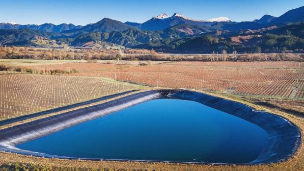 A dam at Patriarch Vineyard, in the Wairau Valley.
