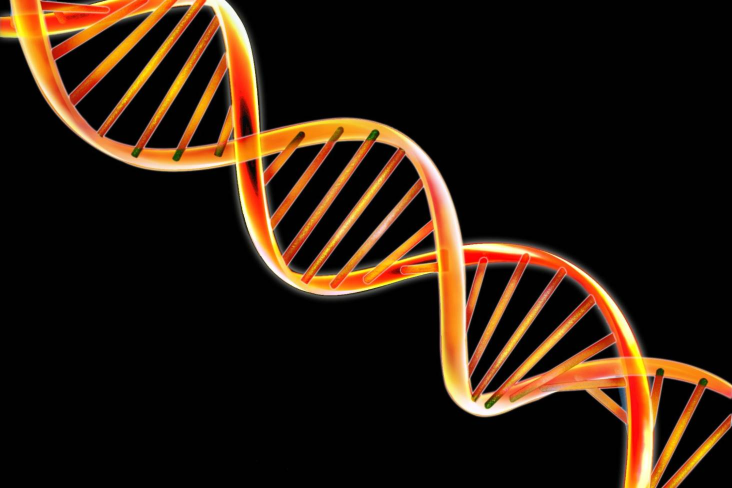 Genealogical DNA: to test or not to test? | Stuff co nz