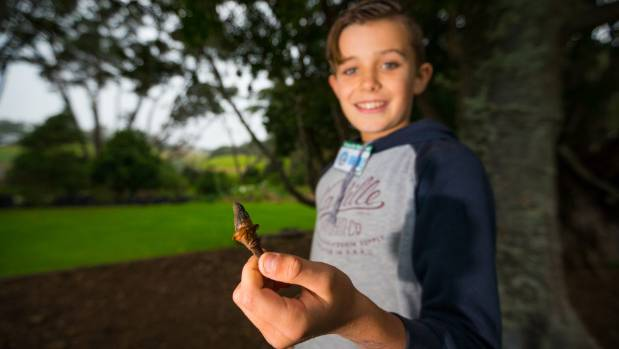 Jax, 11, was able to reel off the names and facts about the various plants around the school, including the Kauri school.