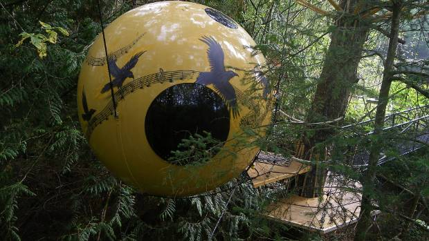 The hotel room sphere named Melody rests in a Spruce tree on Vancouver Island in British Columbia.