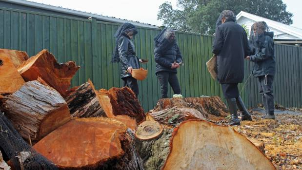 "The ""Grieving Grandmothers"" mourn the felling of mature and native trees throughout Auckland."