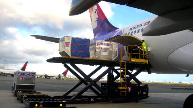 Planes flying to the United States from New Zealand often have more than just passengers and their luggage on board.