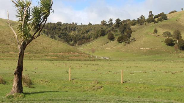 The fenced and soon-to-be-planted Tawataia Stream is overlooked by one of the two QEII National Trust blocks on the ...