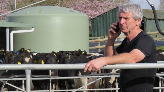 Ian Scott, a large-animal vet and deer and dairy farmer, says an exceptionally wet spring contributed to a spike in ...