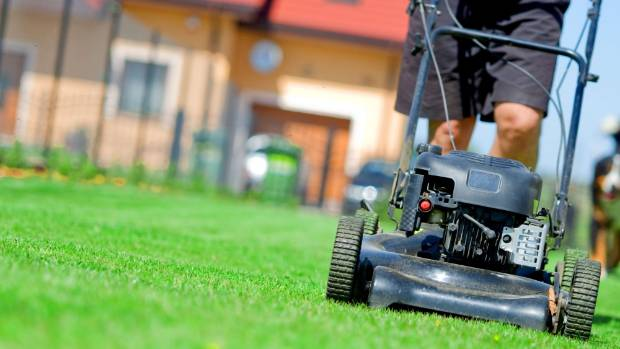 Rotary petrol mowers like this dominate backyards but the big move is to electric mowers.