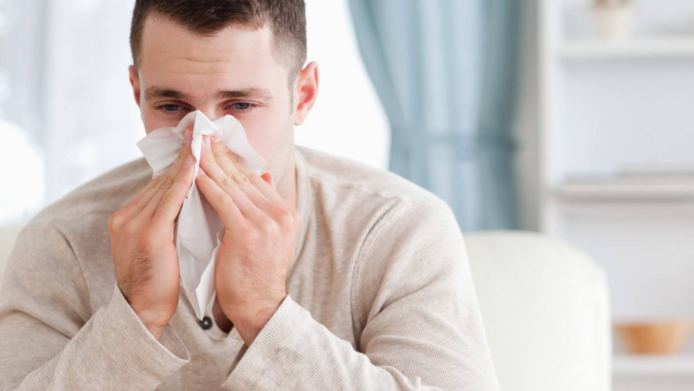 Dr Libby: How to relieve hay fever symptoms using natural remedies |  Stuff.co.nz