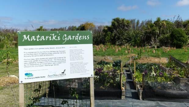 Ngai Tahu and the Avon-Otakaro Network created Matariki Gardens, planting native trees and a vegetable garden.