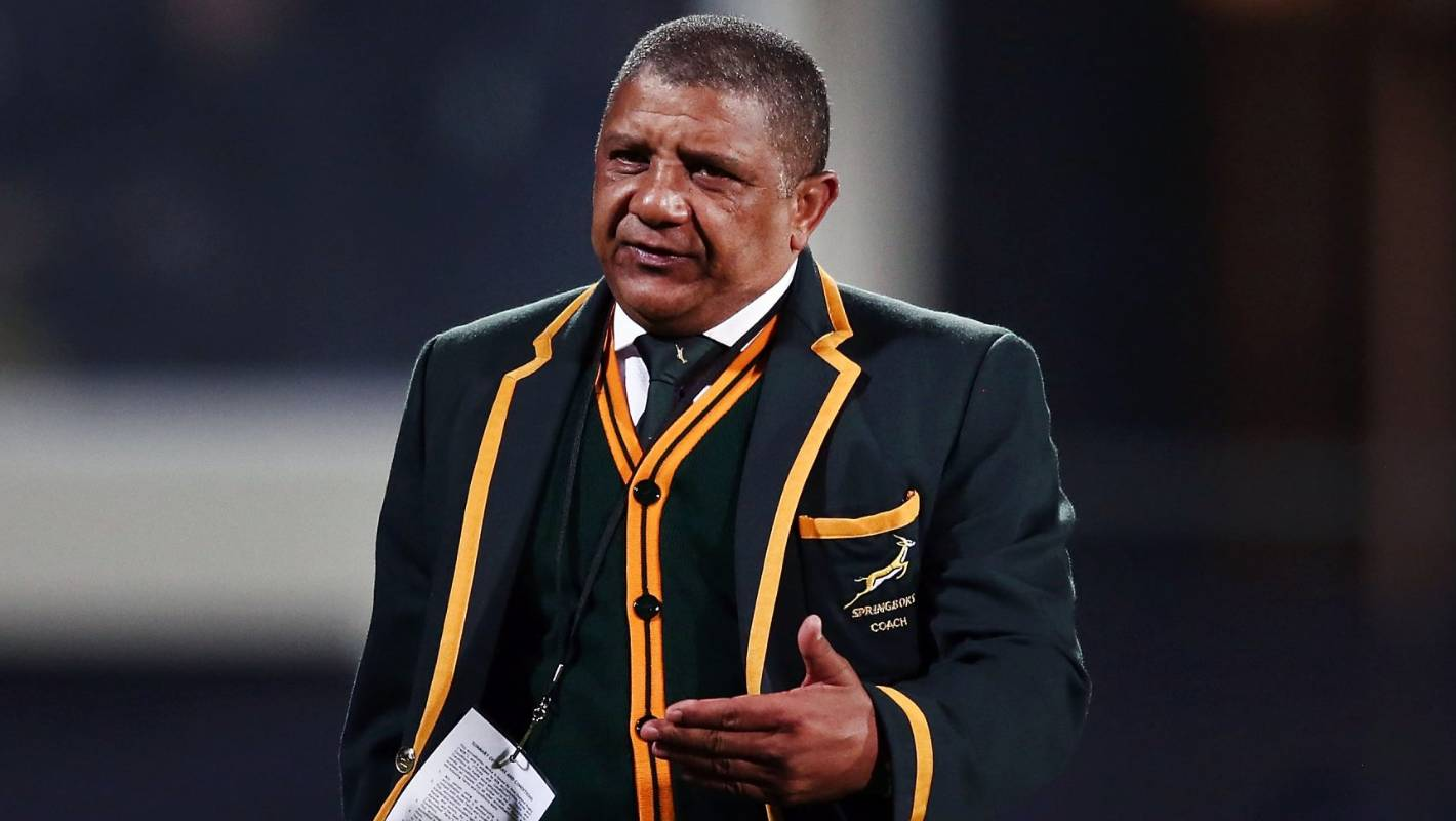 Springboks coach Allister Coetzee hits out with explosive claim his job has been 'terminated'