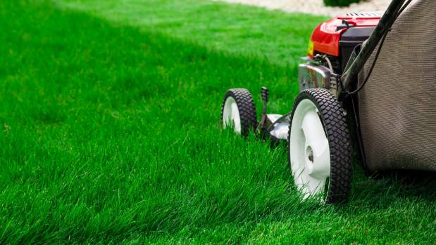 Setting the mower blade at the right height is essential. And please, stop mowing the lawn in the rain.