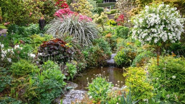 Garden of the week masterclass in waterside planting in for Grow landscapes christchurch