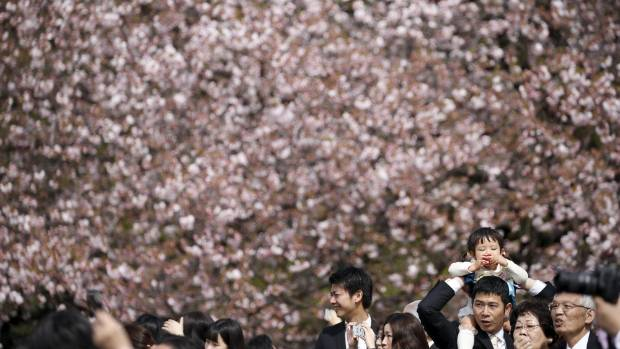 Guests attend a cherry blossom viewing party hosted by Japan's Prime Minister Shinzo Abe at Shinjuku Gyoen park in ...