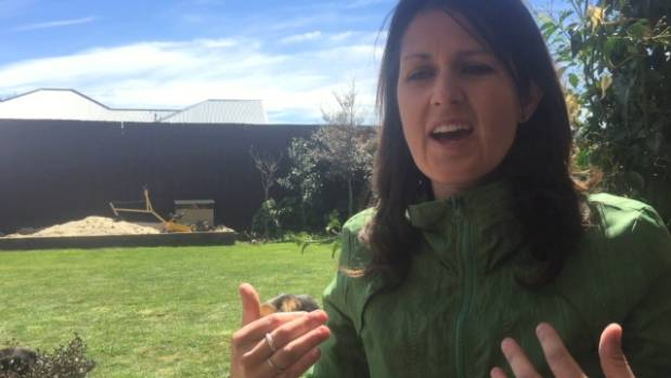 Hurunui District Councillor Julia McLean says extra funding for post-quake recovery in the regions affected by the ...