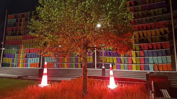 Road cones have been placed over ground lights in Cathedral Square.