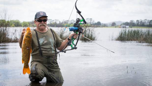 The noxious koi carp no match for Allan Metcalfe and his modified bow.