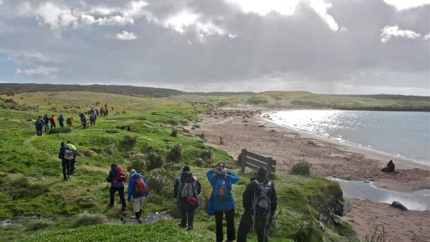 A guided walk on Enderby Island.