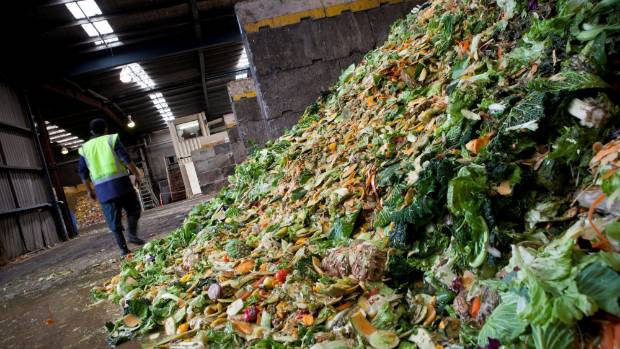 Countdown hopes to combat New Zealand's food waste problem, which costs the average household $563 a year.
