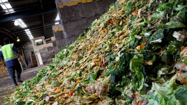 Avoidable food waste costs the average household $563 a year, with Kiwis spending an estimated $872 million a year on ...