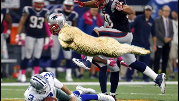 New England Lamb.