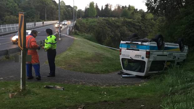 A plumbing van crashed off Cobham Drive in Hamilton.