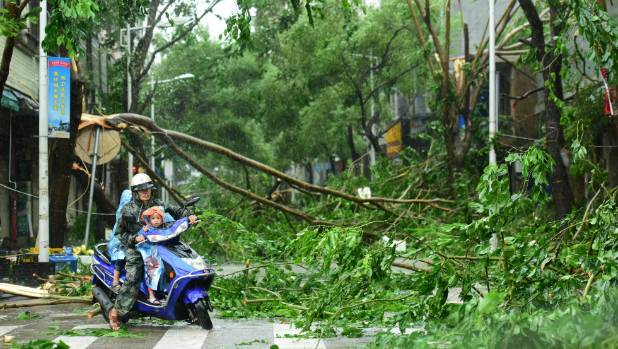 Residents ride a scooter around fallen trees caused by Typhoon Sarika.