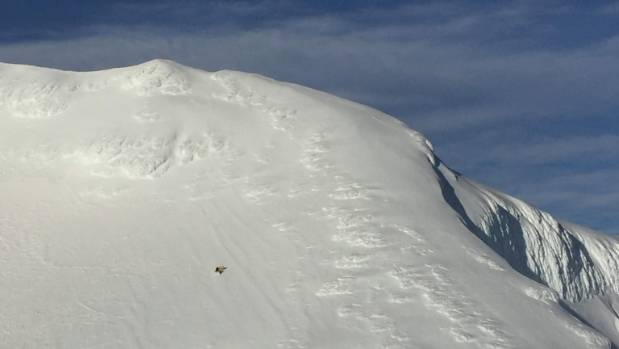 The pair were descending the southern slopes of Mt Ruapehu when one was injured.
