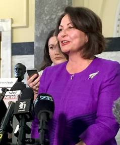 Education Minister Hekia Parata said there were no health issues for her or any of her family members that prompted the ...