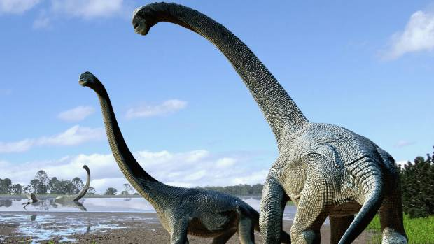 Dinosaurs like these sauropods once used to roam Australia.