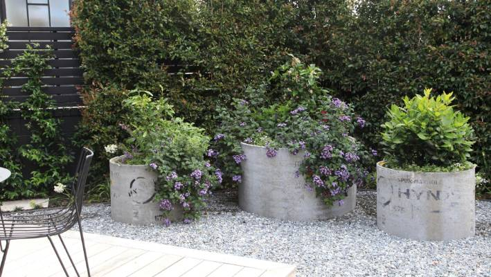 Plants In Pots Add Style To Any Garden, Tall Potted Plants Patio Privacy Nz