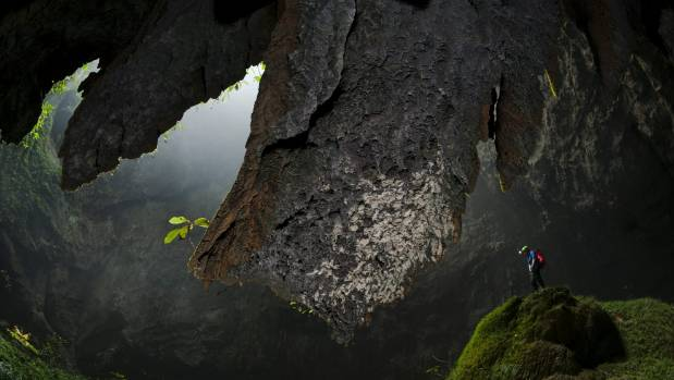 A Hang Son Doong explorer navigates a plant-covered cavescape in Phong Nha Ke Bang National Park, Vietnam.