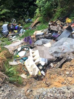 Raglan residents aren't happy with the dumping in a bush.