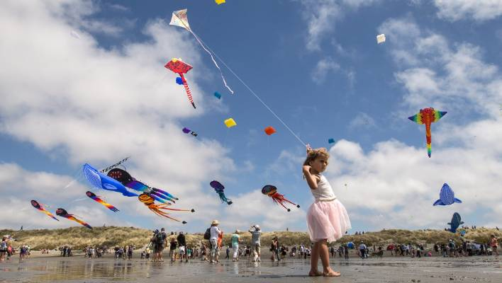 dfe51ede4 Kite day at New Brighton beach is just one of the many free community  events for