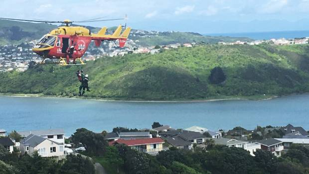 """Did we get the cat?"" An injured firefighter is winched to hospital by the Westpac Rescue Helicopter after Morty the ..."