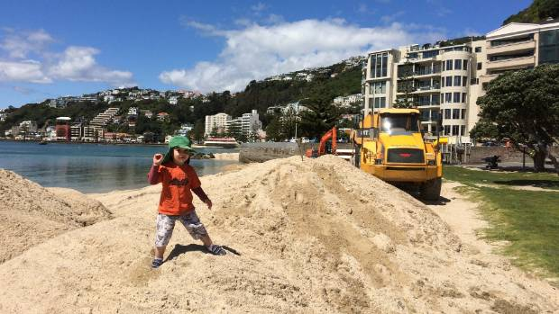 Brazen beach bandits snapped taking sand from Wellington's