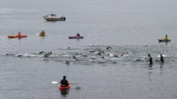 Timaru Ocean Swim will include the harbour as well as open water. There are three separte races from 0.5km to 2.5km.