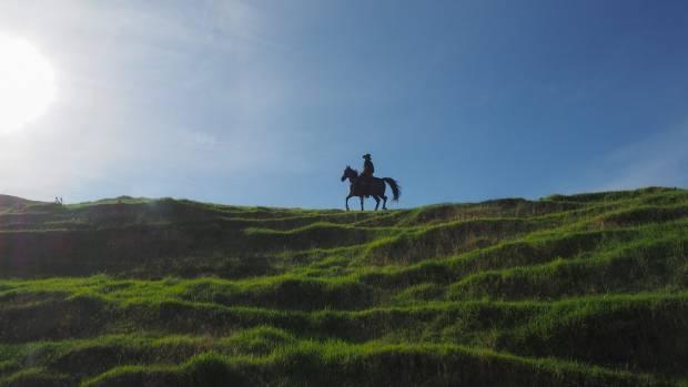 Riding high on the Tour de Coromandel.